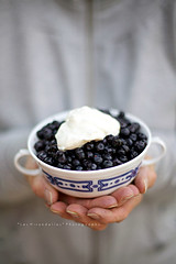 Nothing better than fresh blueberries and mountain milk yogurt (*Les Hirondelles* Photography) Tags: italy woman mountains cup fruits breakfast canon grey donna milk healthy italian hands holidays italia grigio berries dof natural bokeh mani 50mm14 offer delicious snack yogurt latte sweetness bacche frutta merenda blueberries dolcezza vacanze healthyfood italiano colazione naturale vintagecup offerta womanshands delizioso mirtilli ciotola salutare inmontagna manididonna freshblueberries atthemountains leshirondellesphotography mountainblueberries mirtillidimontagna cibosalutare ciotolavintage mirtillifreschi