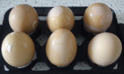 Die Eier müssen nur noch abgeschreckt werden