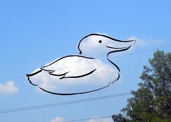 Cloud Drawing - Duck