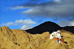 "Tsemo gompa - Leh (mistral-) Tags: world voyage trip travel sunset vacation india holiday travelling art tourism nature beautiful architecture clouds rural wonderful landscape countryside fantastic nikon scenery asia colours tour shadows place awesome natureza sightseeing scenic paisaje visit location adventure journey stunning destination sight paysage exploration viaggio breathtaking ladakh gompa immagine belis photography"" lucabelis •monastery •leh •tsemo"
