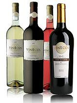 Vinecol fue reconocida como la mejor empresa exportadora «eco friendly»
