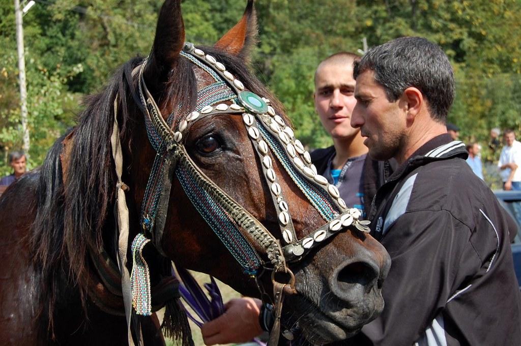 horse race Chargali