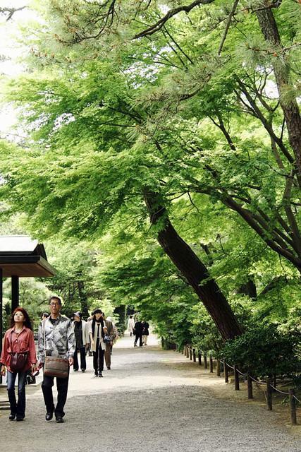 110430_125334_横浜_三渓園