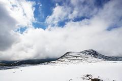 うっすら白い白雲岳