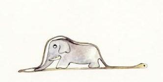 Elephant in boa