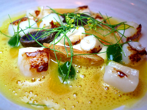 Bay Scallops at ink