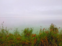 Early morning fog (lettinck) Tags: day cloudy samsung almere galaxy2