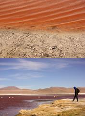 Red (annais) Tags: 50mm bolivia contraste caminante diptico lagunaroja redlagoon reservanacionaldefaunaandinaeduardoavaroa