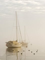 A foggy Portland morning. (Chris Drew Photography) Tags: fog sailboat portland harbor boat duck maine
