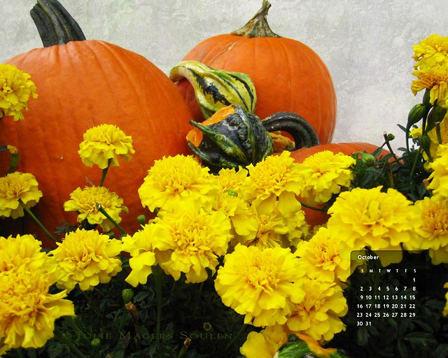 An autumn display of orange pumpkins and yellow marigolds on a desktop wallpaper calendar.