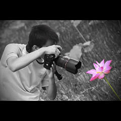 Lotus and Photographer (-clicking-) Tags: friends blackandwhite bw monochrome lotus photographers moment hoasen selectivecolors