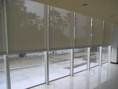 curtain40