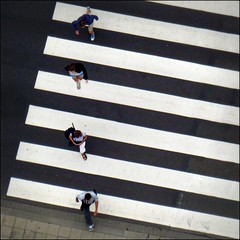 Like Abbey road (Iam sterdam.) Tags: people holland zebra abbeyroad ssrotterdamp1000330