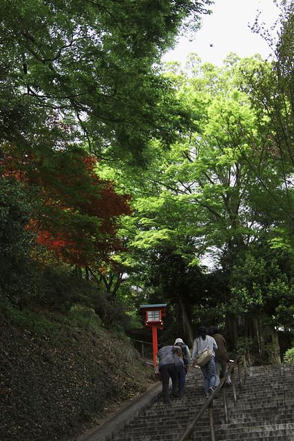 110502_143033_足利_織姫神社
