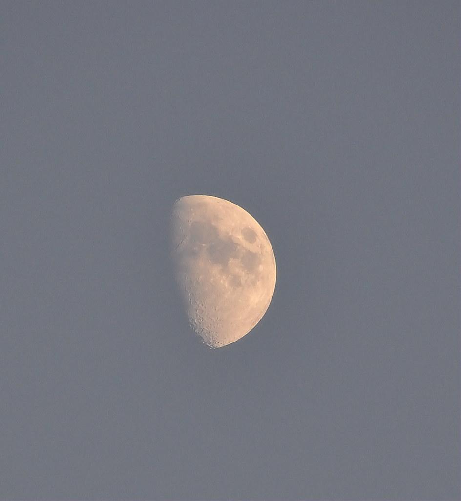 SGM.Dame lune.1.19h28 le 05.10.11