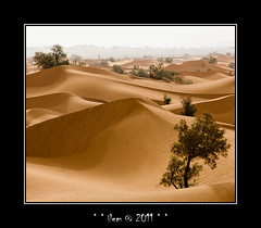 Infinity (pdel64@photography) Tags: sand nikon desert phil sable maroc marocco nikkor saraha mhamid pdel pdel64
