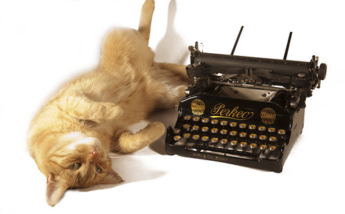 Katzen lieben Schreibmaschinen