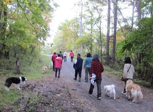 Dog Walk 2011年10月8日15:59 by Poran111