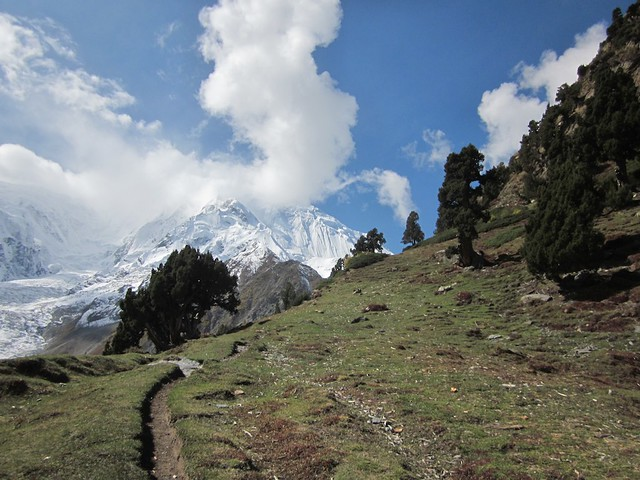 The trail to Rakaposhi high camp.