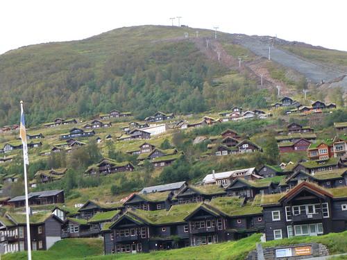 Green Roof Ski Resort