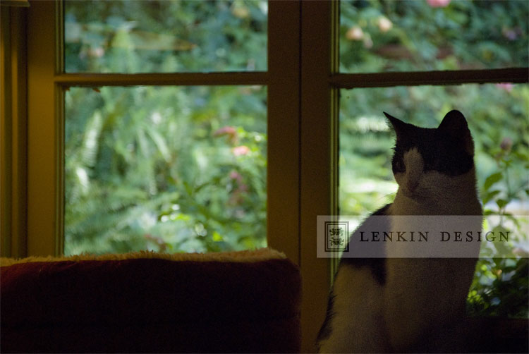 Lenkin-Bessie-09.13.11-019web