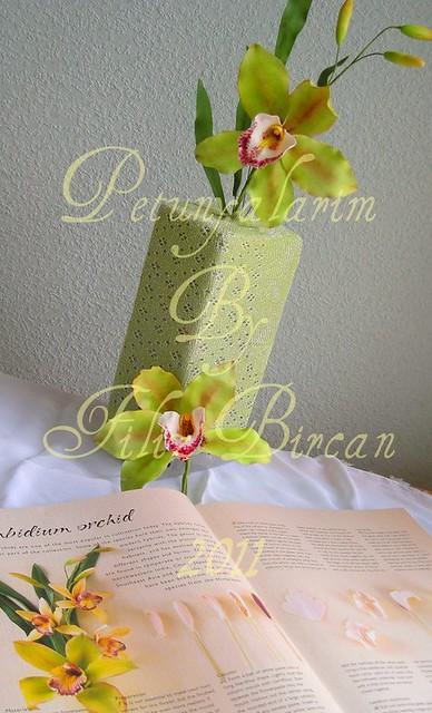 Cymbidium Orkide (Cymbidium Orchid)