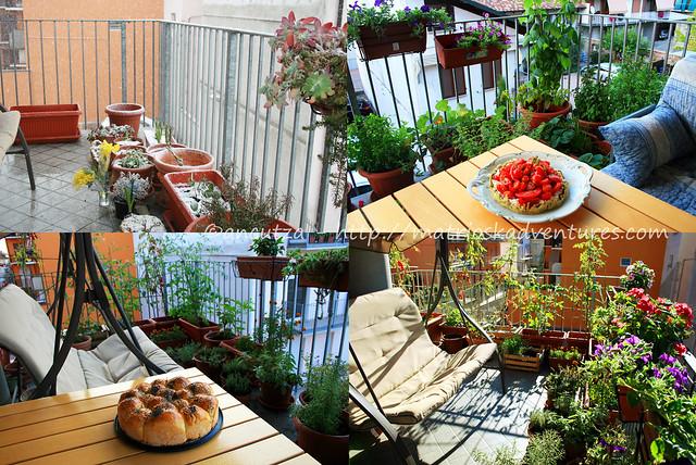 oto orto sul terrazzo con erbe aromatiche e pomodori