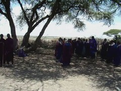 video 03 Los Masai danzas rituales Tanzania (Rafael Gomez - http://micamara.es) Tags: africa tanzania video los danza pueblo musica afrika ritual massai masai maasai baile videos cultura danzas the dances áfrica cantos rituales etnia vídeo étnica canticos masái masáis