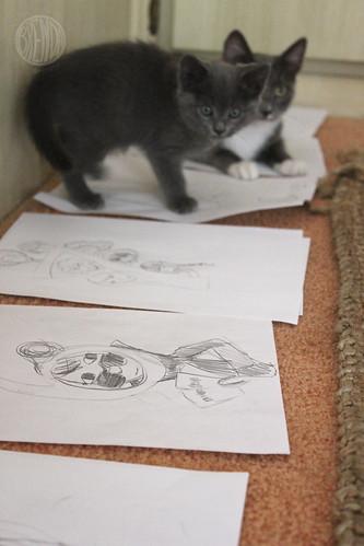 the kittens make their mark