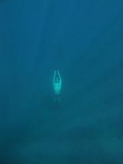 IMG_2619 (d3_plus) Tags: snorkeling freediving izu g12 シュノーケリング 南伊豆 hirizo フリーダイビング ヒリゾ浜 canonpowershotg12 is04