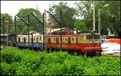 WAM-4 Treat @ Jharsuguda (Ankit Bharaj) Tags: india station electric speed train canon wagon photography is dc high mixed mail diesel indian duty traction engine rail 100 express enthusiast siding railways coaches bia freighter ankit sx bhilai railfanning orrisa irfca scer wam4 loomotive bharaj jharsuguda