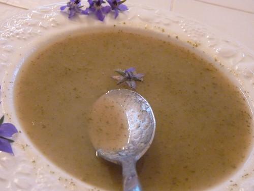 Soupe de bourrache