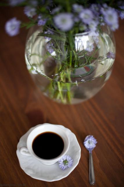 cafezinho-0079
