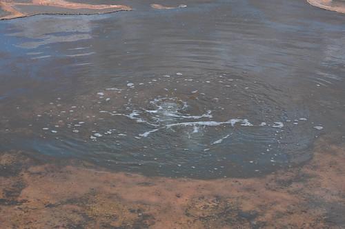 Cascadas de Hierve el Agua (22)