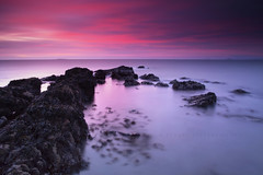Ruby bay (Stuart Stevenson) Tags: uk longexposure seascape seaweed water sunrise photography dawn scotland rocks fife earlymorning september kelp northsea colourful elie firthofforth bass