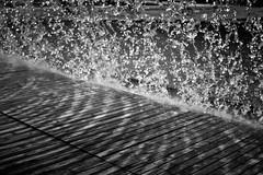 (A......M......A) Tags: ocean voyage trip cruise ireland light summer costa mer white black holland portugal amsterdam port canon aquarium vacances holidays noir colours harbour cork centre lumiere 7d monuments t bateau espagne blanc ville barcelone visite lisbonne escale 2011 croisiere paquebot cadix