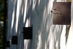 2011-09-16-Torsebro-6395.jpg