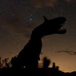 Nighttime view of dinosaur statues in the Anza-Borrego Desert. Galleta Meadows Estates. thumbnail