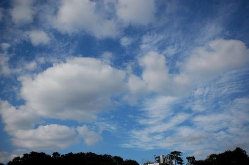 20110927-DSC_2659aki-no-sora