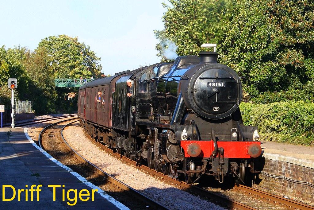 tiger train station surprises - 1024×684