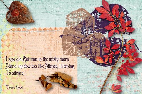 Autumn Leaves, for Sunday Postcard Art