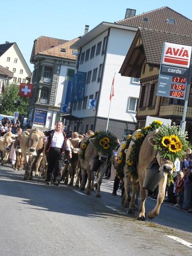 Alpabfahrt, Schüpfheim, Switzerland