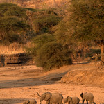 family at sunset in dry Mdonya river