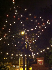 A web of lights above Travelers Thali restaurant (litlnemo) Tags: seattle restaurants beaconhill