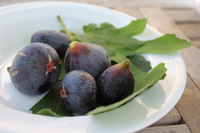 locally foraged figs IMG_2865