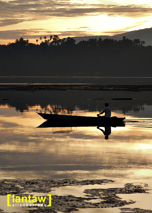 Early Morning Paddler