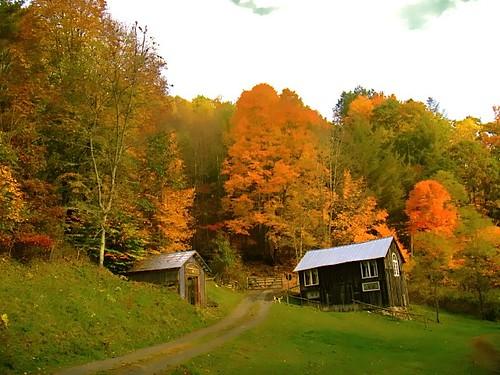little-horse-creek-barn