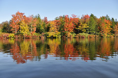 234 Beautiful Fall Colors at Promised Land State Park (The_Little_GSP) Tags: statepark autumn trees fallleaves lake fall leaves fallcolors canoe autumnleaves autumncolors poconos promisedland pikecounty promisedlandstatepark poconomountains pennsylvaniastatepark littlegspphotography