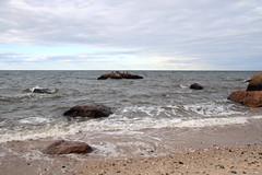 Glacial Erratics in Long Island Sound (sandy richard) Tags: usa newyork unitedstates geology wildwood wadingriver wildwoodstatepark sandyrichard longislandgeology sandrarichard