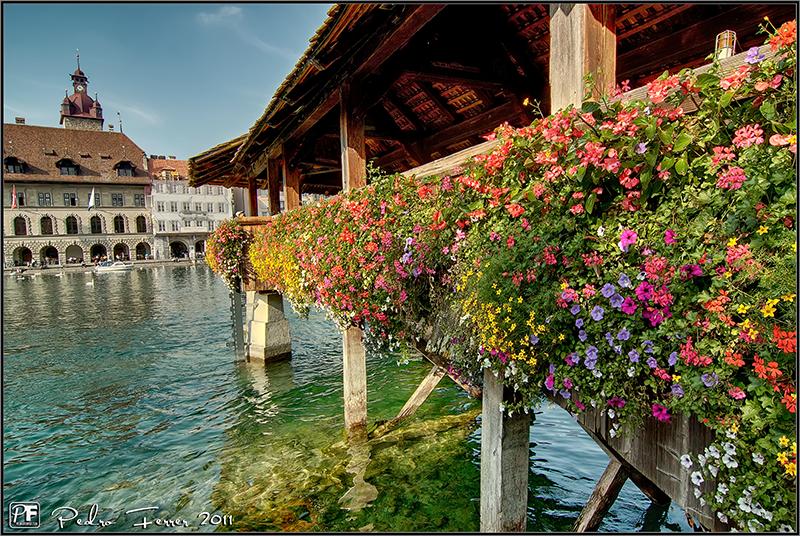 Suiza - Pueblos con encanto Lucerna - Flores en Kapellbrücke